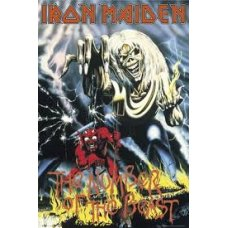 Iron Maiden - The Nature of the Best wall canvas