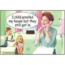 I Child Proofed my House